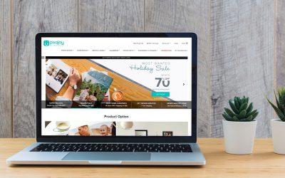 What's New: Pixajoy Website