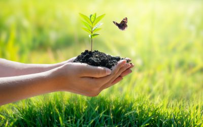 4 Easy Ways to Go Green for Earth Day (and Everyday)
